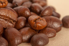 Coffee beans. Brown coffee beans, can be used as background Stock Photos