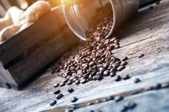 Coffee Beans in Bucket Royalty Free Stock Photo