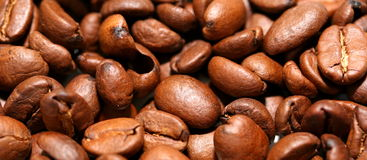 Coffee beans. A bunch of coffee beans Stock Photos