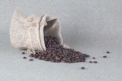 Coffee beans in burlap bag. Coffee beans spilled from bag background royalty free stock image