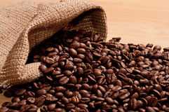 Coffee beans in burlap bag Stock Images