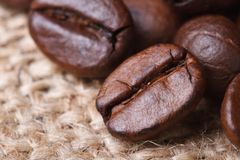 Coffee beans on burlap closeup. horizontal. Stock Image