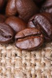 Coffee beans on burlap closeup. vertical. Royalty Free Stock Photo