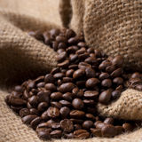 Coffee beans on burlap fabric stock image