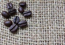 Coffee Beans on burlap. A few coffee beans  with a burlap sack as background Royalty Free Stock Photos