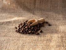 Coffee beans on burlap sack stock photos