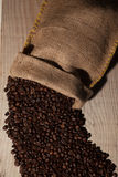 Coffee beans in burlap sack Royalty Free Stock Image