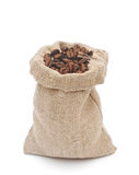 Coffee beans and burlap sack Stock Images