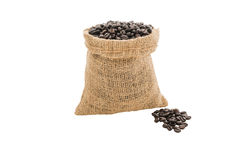 Coffee beans in burlap sack isolated Stock Image