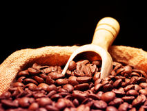 Coffee beans on burlap sack Royalty Free Stock Photography