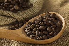 Coffee beans on burlap sack Royalty Free Stock Image