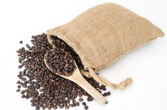 Coffee beans on burlap sack with wooden scoop Stock Image