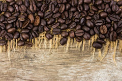 Coffee beans on burlap and wood Stock Images