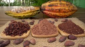 Coffee beans, cacao nibs, cocoa powder, raw cocoa fruit, cacao beans on burlap. On wooden table stock footage