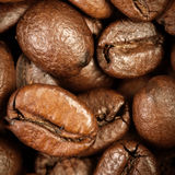 Coffee Beans Caffeine Roasted Brown Espresso wallpaper close up. Fried Coffee Beans Texture macro stock photography