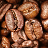Coffee Beans Caffeine Roasted Brown Espresso wallpaper close up. Fried Coffee Beans Texture macro royalty free stock photography