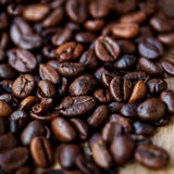 Coffee Beans Caffeine Roasted Brown Espresso wallpaper close up. Fried Coffee Beans Texture macro stock photo