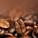 Coffee Beans Caffeine Roasted Brown Espresso wallpaper close up. Fried Coffee Beans Texture macro royalty free stock images