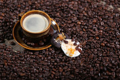 Coffee beans and cakes. Coffee beans in a coffee cup and some cake, one biscuit Royalty Free Stock Photos