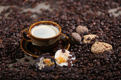 Coffee beans and cakes. Coffee beans in a coffee cup and some cake, one macaron cake Stock Photo