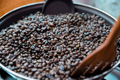 Coffee beans. Coffee beans, can be used as a background Royalty Free Stock Photo