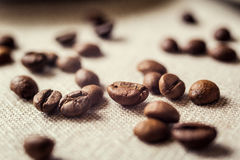 Coffee beans and candy cane.spilled coffee beans. Beans Royalty Free Stock Images