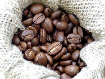 Coffee beans in canvas Stock Image