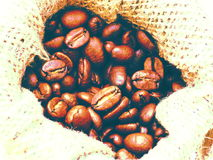 Coffee beans in canvas Stock Photo