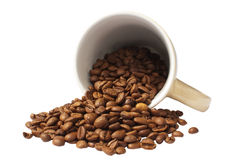 Coffee beans, ceramic cup Royalty Free Stock Image