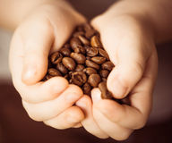 Coffee beans in child palms Stock Photo