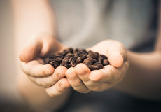 Coffee beans in child palms Stock Image