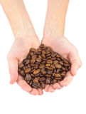 Coffee beans in children\'s hands Royalty Free Stock Photography