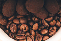 Coffee beans and chocolate truffle Stock Image