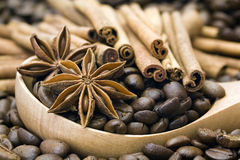 Coffee beans, cinnamon and anise. Close up of coffee beans, cinnamon and anise Stock Images