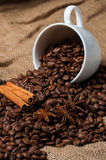 Coffee beans, cinnamon and aniseed in coffee cup. Royalty Free Stock Photography