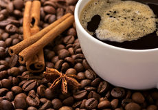 Coffee in beans with cinnamon bark and anise Stock Photography
