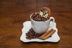 Coffee beans cinnamon cookie white cup and saucer Royalty Free Stock Images