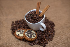 Coffee beans cinnamon cookie white cup Stock Photography