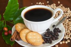 Coffee , beans, cinnamon and cracker. Royalty Free Stock Photography