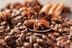 Coffee beans, cinnamon and star anise closeup Royalty Free Stock Photography