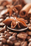 Coffee beans, cinnamon and star anise closeup Stock Images
