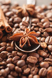 Coffee beans, cinnamon and star anise closeup Royalty Free Stock Images