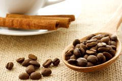 Coffee beans and cinnamon sticks Royalty Free Stock Photography