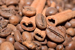 Coffee beans with cinnamon sticks backround Stock Photos