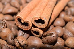 Coffee beans with cinnamon sticks backround Royalty Free Stock Photo