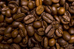 Coffee beans close-up Royalty Free Stock Photography