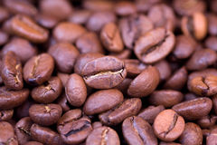 Coffee beans close up. Studio close up of roasted coffee beans stock photography