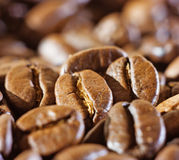 Coffee beans, close-up Royalty Free Stock Images