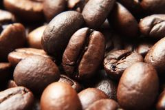 Coffee beans - close up Royalty Free Stock Images