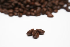 Coffee Beans Close-up Stock Image